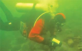 diver-mcnabcreek-2012-squamishchief